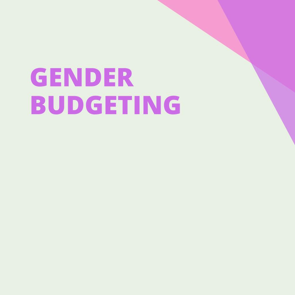 gender budgeting, social services, pdp organisation