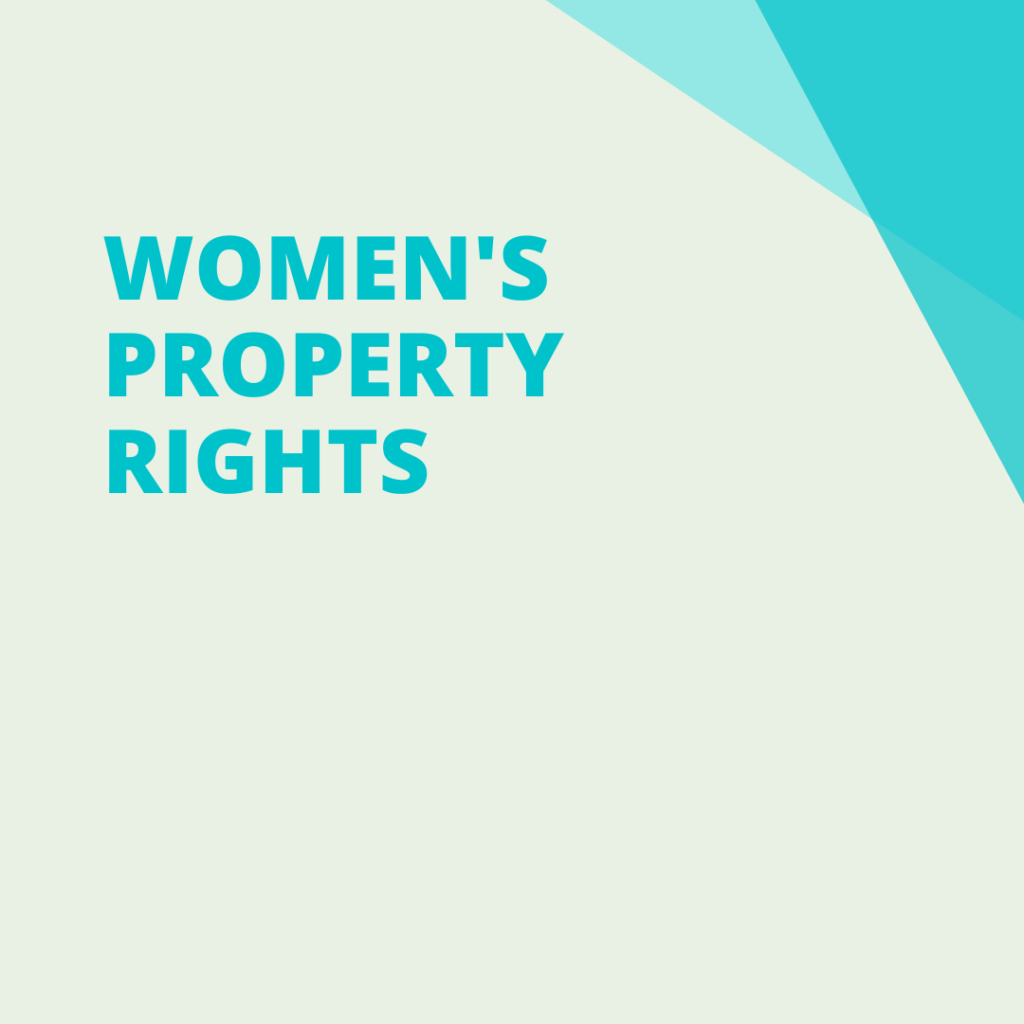 women's property rights, pdp organisation